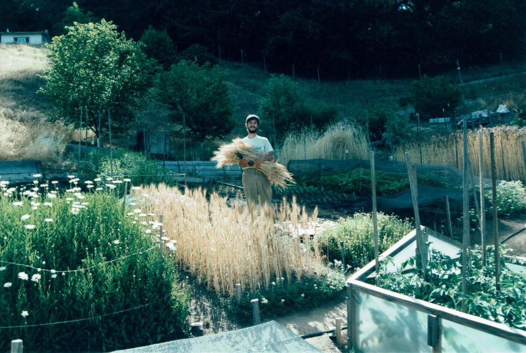 During year long apprenticeship at Ecology Action, Willits, CA 2001